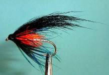 SEA TROUT PATTERNS