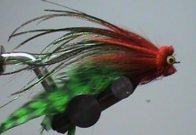 Danilo Marinho 's Fly-tying for Freshwater dorado - Pic | Fly dreamers