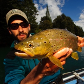 Fly fishing for brown trouts - Rio Manso Lodge