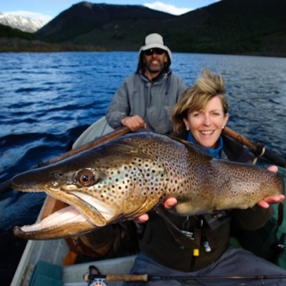 Nice Brown trout - Hess Channels - Rio Manso Lodge