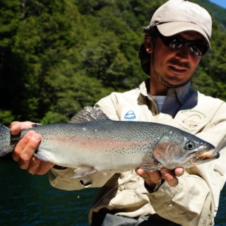Fly fishing for Rainbowtrout - Rio Manso Lodge