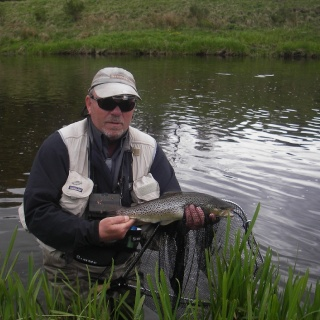 Trout  Fishing River Don Scotland 2014