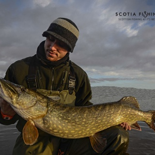Owner with a nice Pike in the warm evening light.