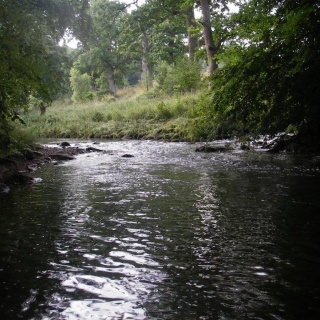 Fly fishing small streams and becks in North of England
