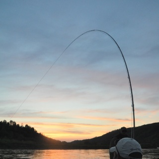 Sunset on the Restigouche, Adams Pool