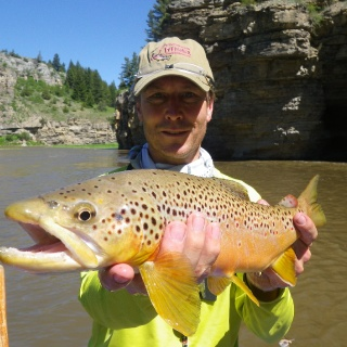 Smith River Brown