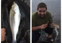 Fly-fishing Picture of Striper shared by Terry Landry – Fly dreamers
