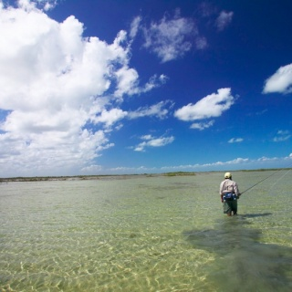 Fly fishing in the flats - Ascension Bay Bonefish Club