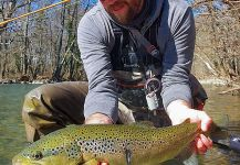Fly-fishing Situation of Salmo trutta - Image shared by Uros Kristan - URKO Fishing Adventures | Fly dreamers