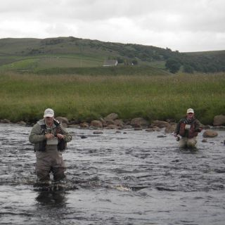 Upper River Tees searching pocket water for wild brown trout