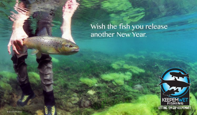 Wish the fish that you release another New Year! Brian O'Keefe photo. #keepemwet #catchandrelease