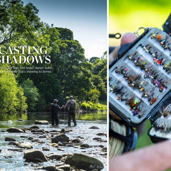 Fly Fishing the River Swale, North Yorkshire, UK